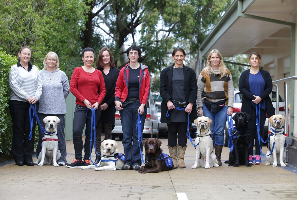 Trained assistance dog teams line up, each person with their trained canine partner